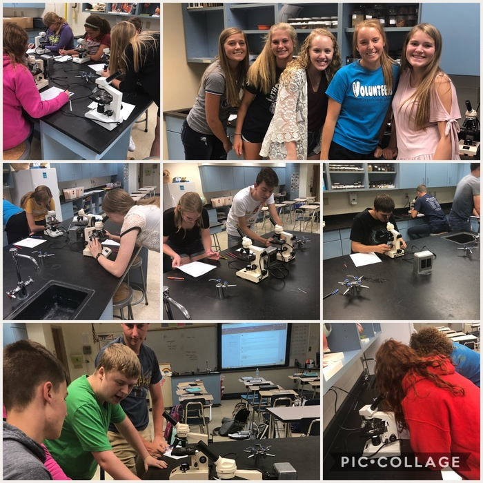 THS Aanatomy & Physiology students checked out epithelial, connective, muscle, and nervous tissues with the microscopes today!